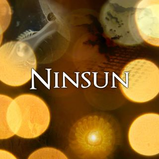 Ninsun demo cover